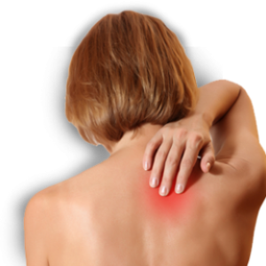 Low Back Pain: Where Is My Pain Coming From?