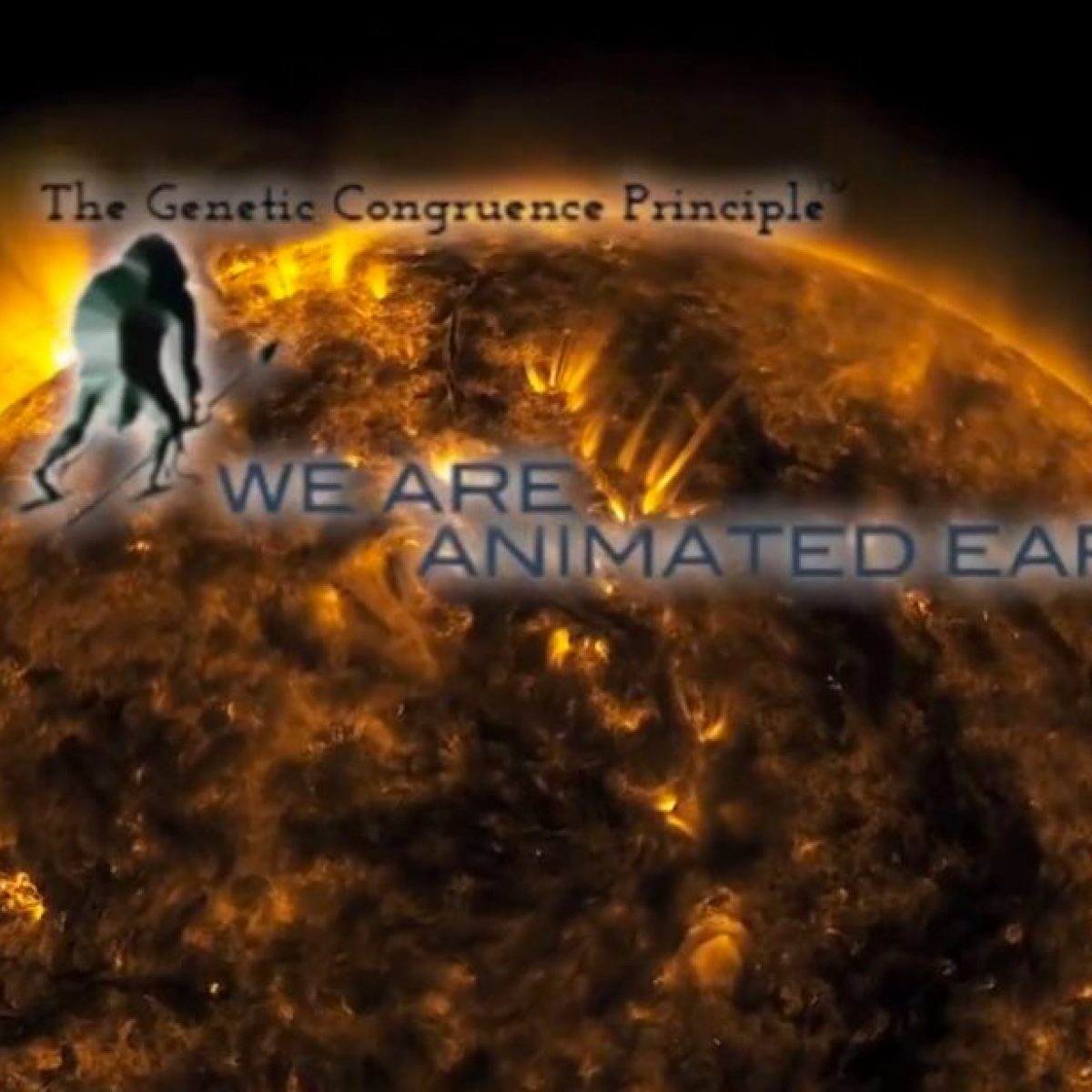 We are Animated Earth Epic Video