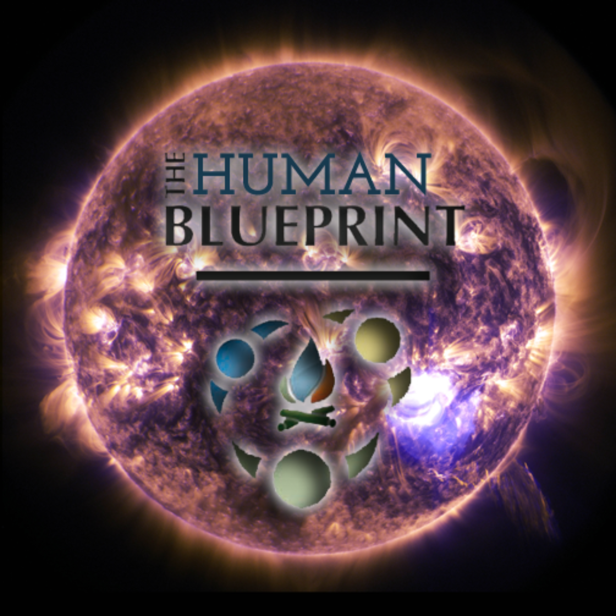 The Human Blueprint | Animated Saga