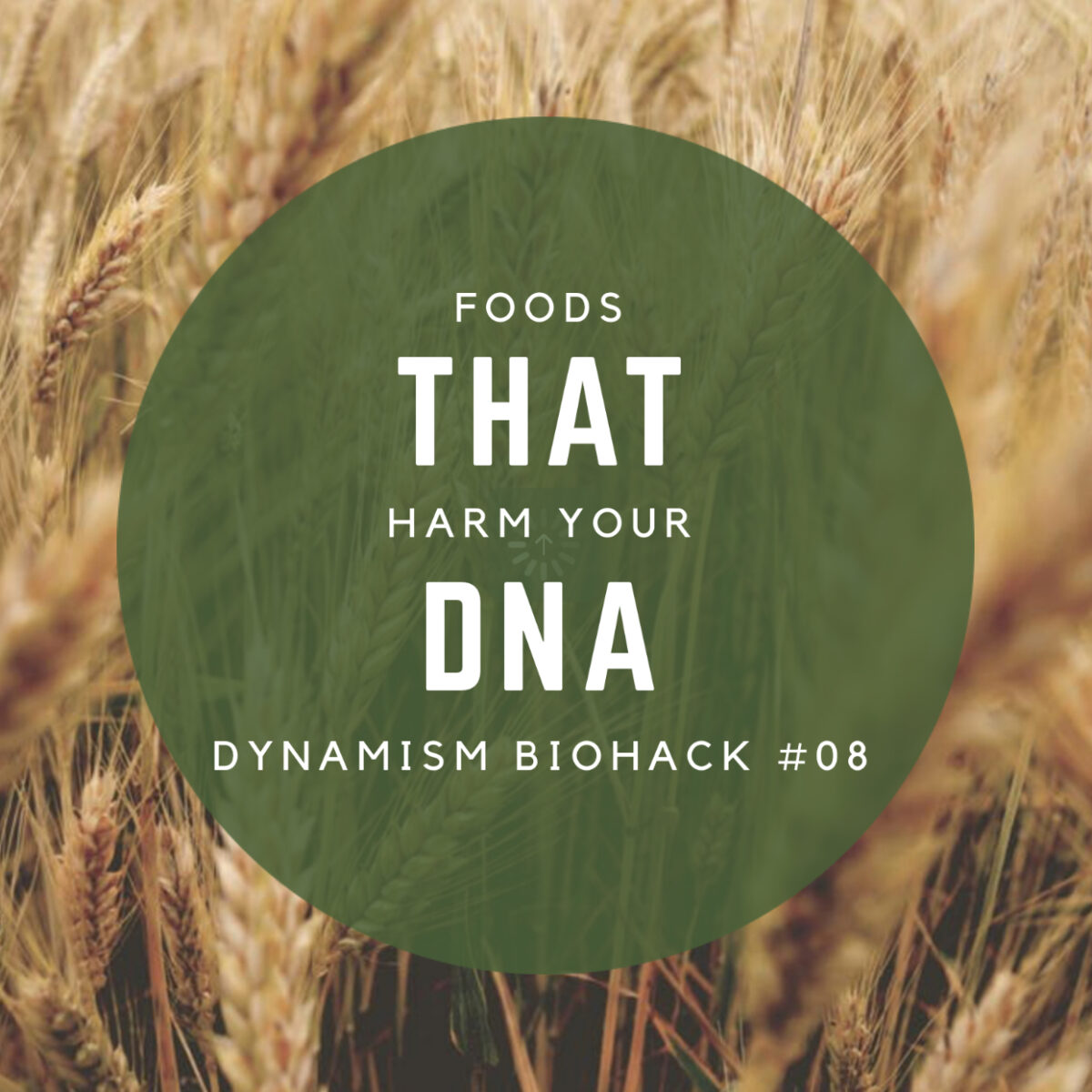 #8: Foods that Harm your DNA