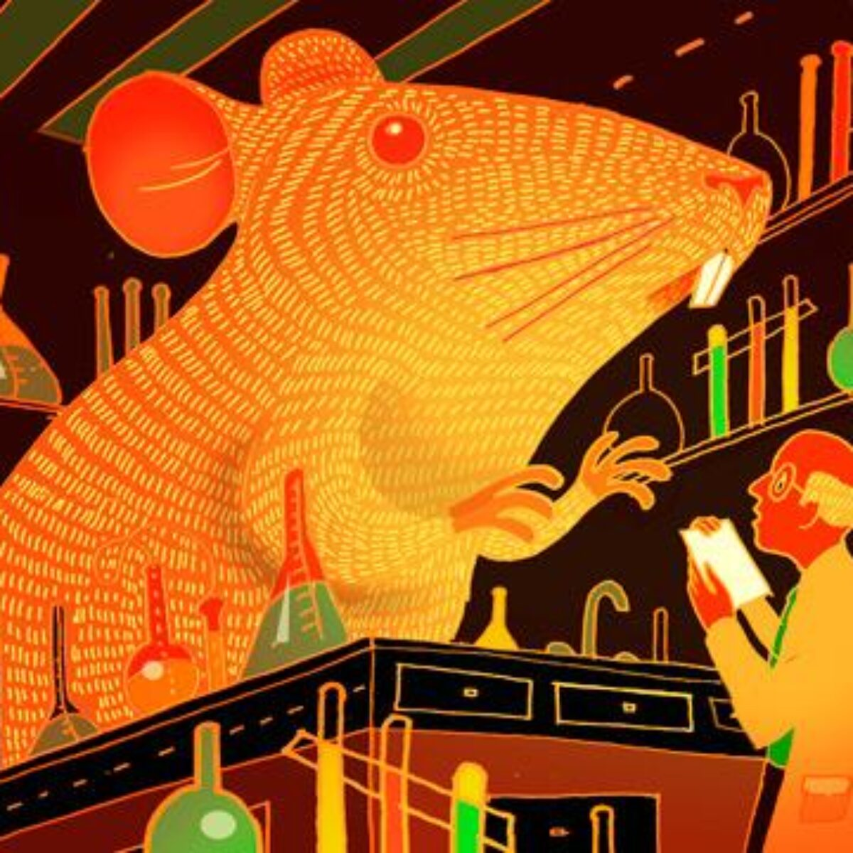 Oh, Rats...BOGUS Evidence-Based Research EXPLORED