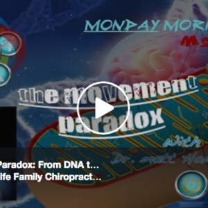The Movement Paradox: From DNA to Embryogenesis to Mitochondria