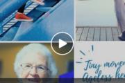 Tiny Movement Ageless Health