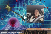 Why Chiropractic Takes Longer? Myelinate Your Postural Circuitry
