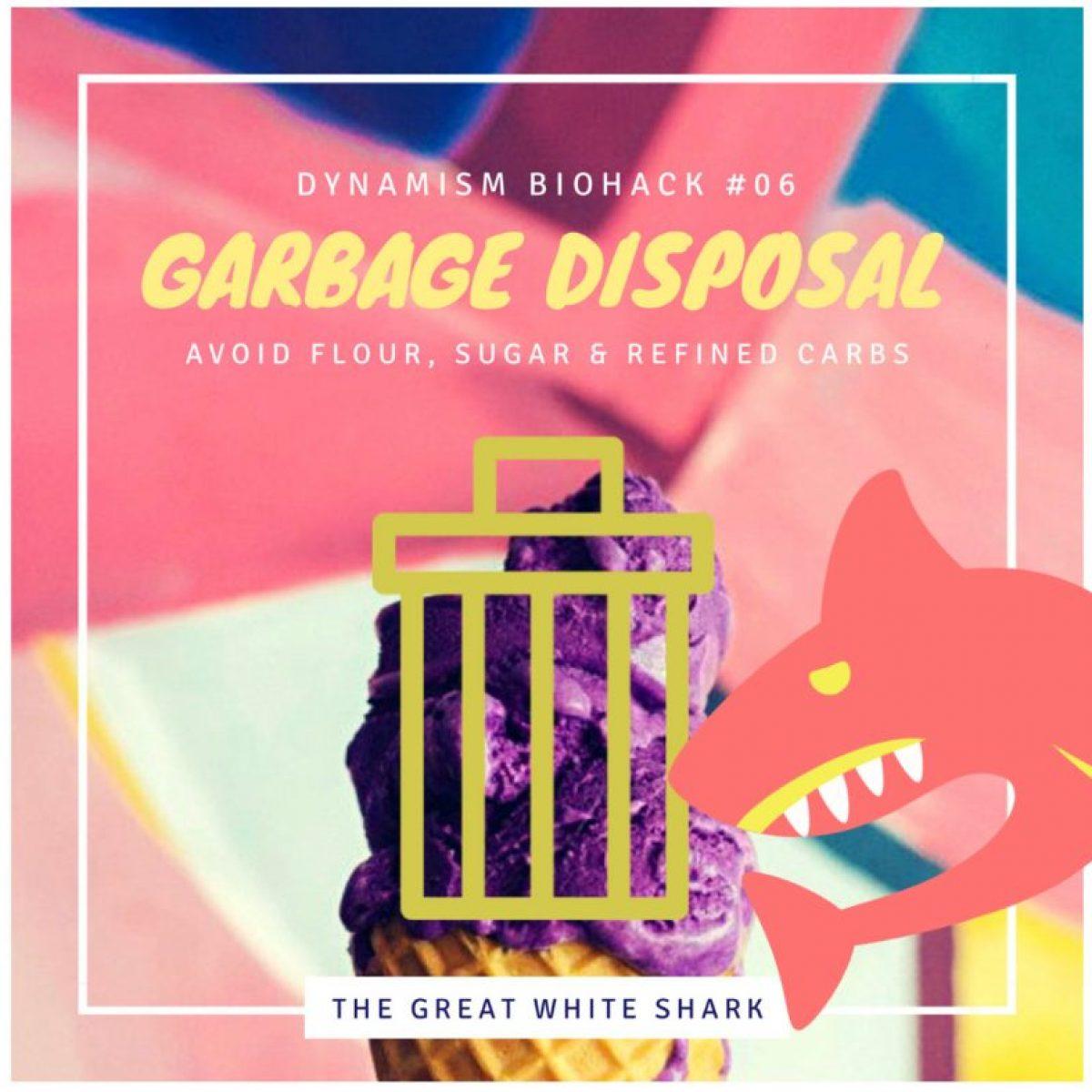 #6: Garbage Disposal