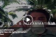 Stress & Inflammation