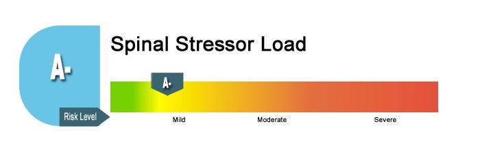 Spinal Stressor Risk